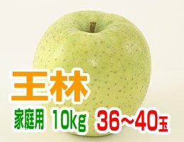 【11月上旬発送予定】王林 家庭用10kg(約36〜40玉)
