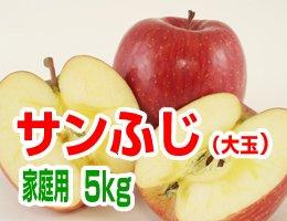 【12月発送】【大玉】サンふじ 家庭用5kg(約13〜16玉)