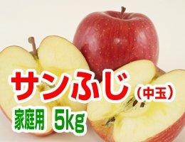 【12月発送】【中玉】サンふじ 家庭用5kg(約18〜20玉)