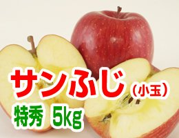 【12月発送】【特秀小玉】サンふじ 贈答用5kg(約21〜23玉)