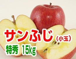 【12月発送】【特秀小玉】サンふじ 贈答用15kg(約63〜69玉)
