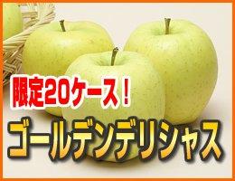 【数量限定】【10月中旬発送予定】ゴールデンデリシャス 3kg(約8〜11玉)