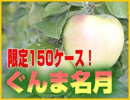 【数量限定】【11月上旬発送予定】ぐんま名月 5kg(約14〜18玉)