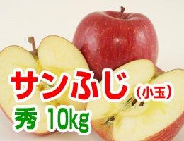【12月発送】【秀小玉】サンふじ 贈答用10kg(約42〜46玉)