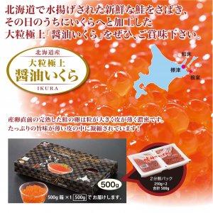 北海道産 大粒極上醤油いくら 500g(500g×1箱)を通販【クール冷凍便】