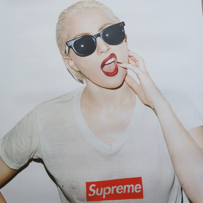 Supreme Lady Gaga Poster<img class='new_mark_img2' src='//img.shop-pro.jp/img/new/icons47.gif' style='border:none;display:inline;margin:0px;padding:0px;width:auto;' />