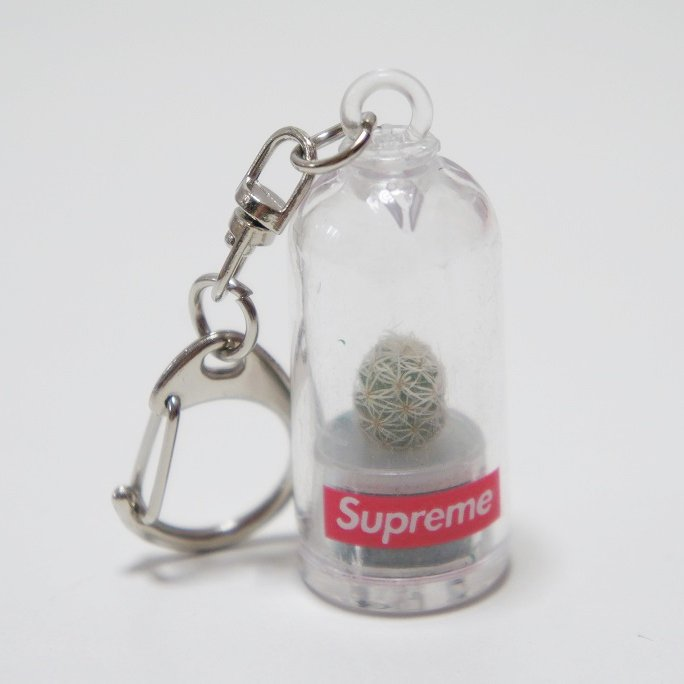 Supreme Cactus keychain<img class='new_mark_img2' src='https://img.shop-pro.jp/img/new/icons47.gif' style='border:none;display:inline;margin:0px;padding:0px;width:auto;' />