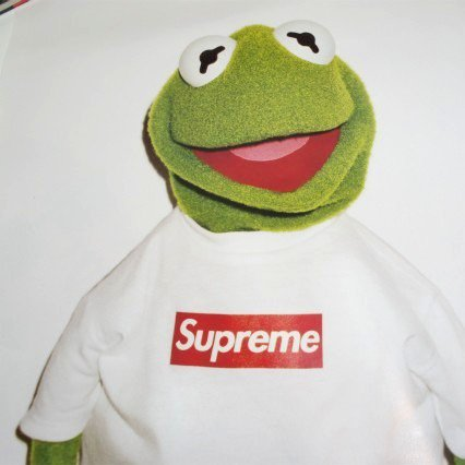 Supreme Kermit Poster<img class='new_mark_img2' src='https://img.shop-pro.jp/img/new/icons47.gif' style='border:none;display:inline;margin:0px;padding:0px;width:auto;' />