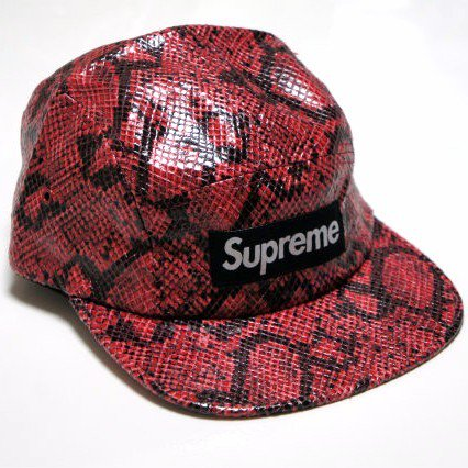Supreme Snakeskin Box Logo Camp Cap<img class='new_mark_img2' src='https://img.shop-pro.jp/img/new/icons47.gif' style='border:none;display:inline;margin:0px;padding:0px;width:auto;' />
