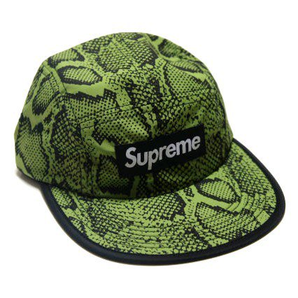 Supreme Box Logo Snake Soft Bill Camp Cap<img class='new_mark_img2' src='//img.shop-pro.jp/img/new/icons47.gif' style='border:none;display:inline;margin:0px;padding:0px;width:auto;' />