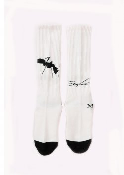 MUZE x Fun - NOISE SOCKS (WHITE)