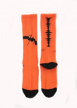 MUZE x Fun - NOISE SOCKS (ORANGE)