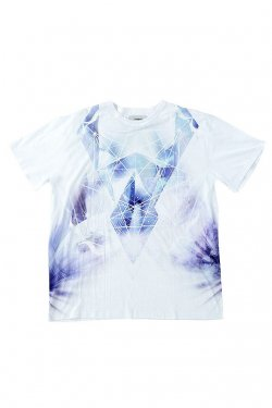 PARADOX - GRAPHIC BIG TEE (ICEBOUND) パラドックス Tシャツ