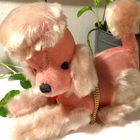 Pink Poodle Radio