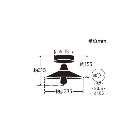 ペガサス(外消しP1・CL型BR) | 後藤照明