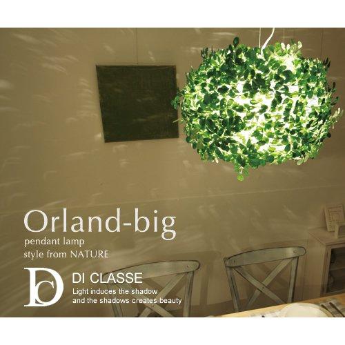 orland big mozeypictures Images