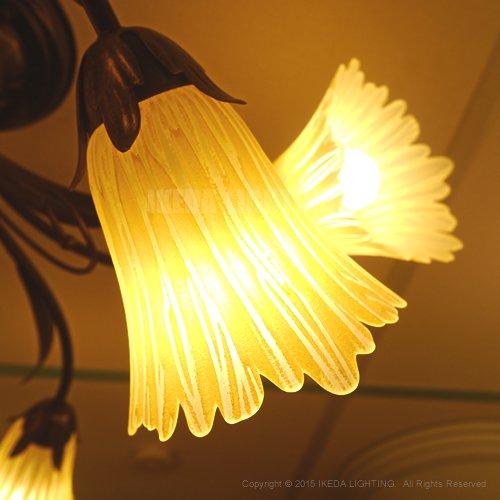 インポートシャンデリア (アンバー) 5灯