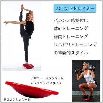 両足用 バランストレイナー(スタンダードモデル)/  体幹、バランス感覚強化、筋トレ