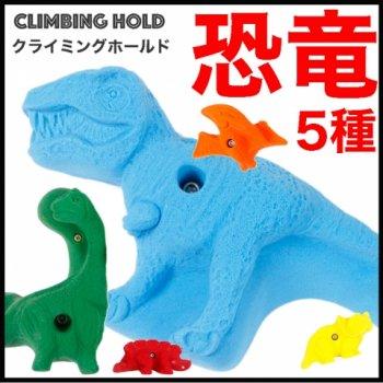 【Boltタイプ】5 XL ダイナソー (恐竜) - 5 Pack Dinosaurs  - クライミングホールド