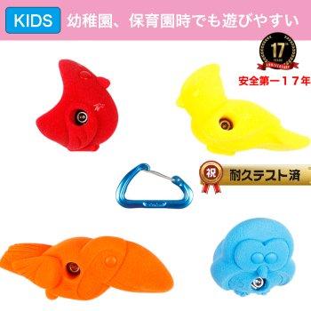 【Boltタイプ】5 pack  バード - 5 Pack Birds   - 鳥のクライミングホールド