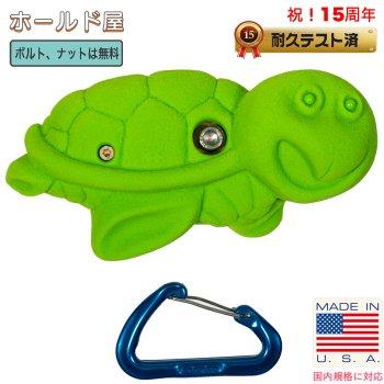 【Boltタイプ】亀  タートル クライミングホールド( Turtle、カメ、かめ )