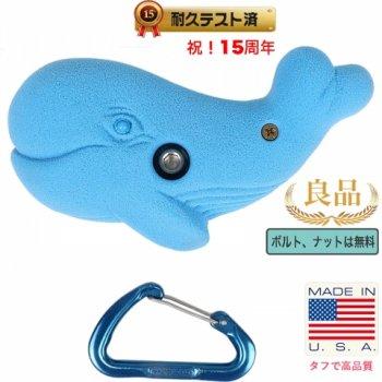 【Boltタイプ】クジラ / Whale  - 鯨(くじら、ホエール)クライミングホールド
