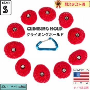 【Boltタイプ】10 ブレイン コーラルスラブ クリンプ  /  10 Brain Coral Slab Crimps  - クライミングホールド