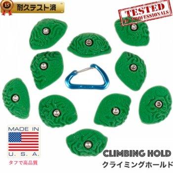 【Boltタイプ】10  Steep Wall  ブレイン コーラルスラブ クリンプ  /  10 Steep Wall Brain Coral Crimps - クライミングホールド