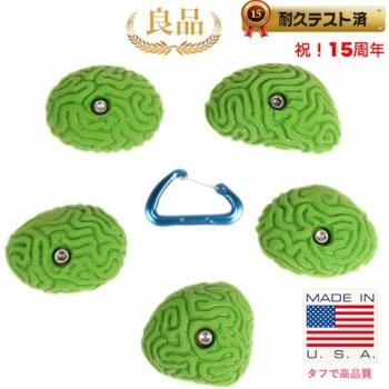 【Boltタイプ】5 ブレイン コーラル ラウンダー  /  5 Medium Brain Coral Rounders  - クライミングホールド