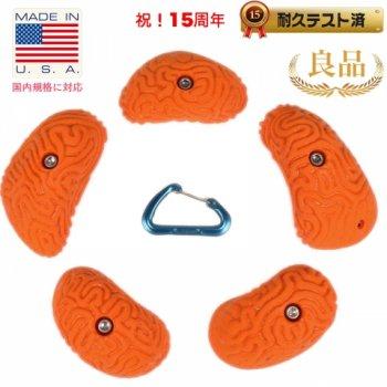 【Bolt タイプ】5 ラージ ブレイン コーラル ピンチ  #1  /  5 Large Brain Coral Pinches #1  クライミングホールド