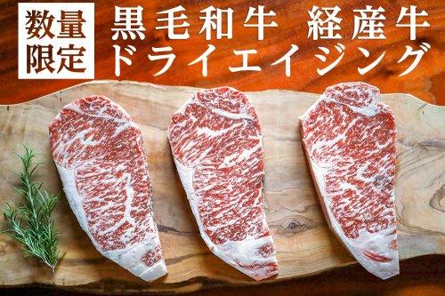 黒毛和牛 経産牛 ドライエイジング熟成肉 40日熟成 250g〜300g サーロイン  冷凍