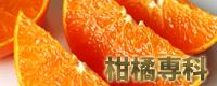 柑橘専科へ