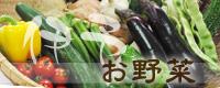 伊予野菜へ