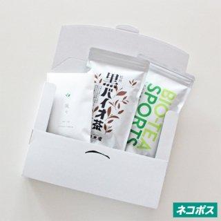 スタンダードSET(スポーツ/黒バイオ茶/颯々)
