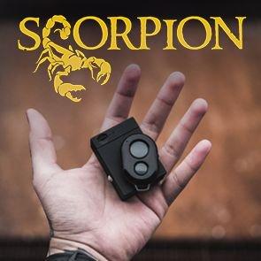 Scorpion by Bobby Motta