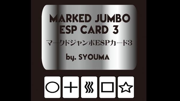 Marked Jumbo ESP Cards (Black) by Tejinaya Magic - Trick