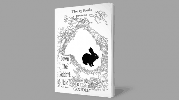 <img class='new_mark_img1' src='https://img.shop-pro.jp/img/new/icons11.gif' style='border:none;display:inline;margin:0px;padding:0px;width:auto;' />Down The Rabbit Hole by Reese Goodley - Book