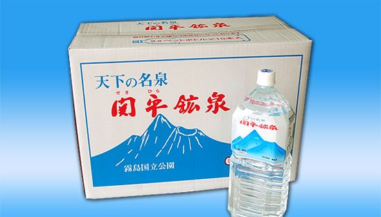 関平鉱泉 ペットボトル2リットル(10本入り)