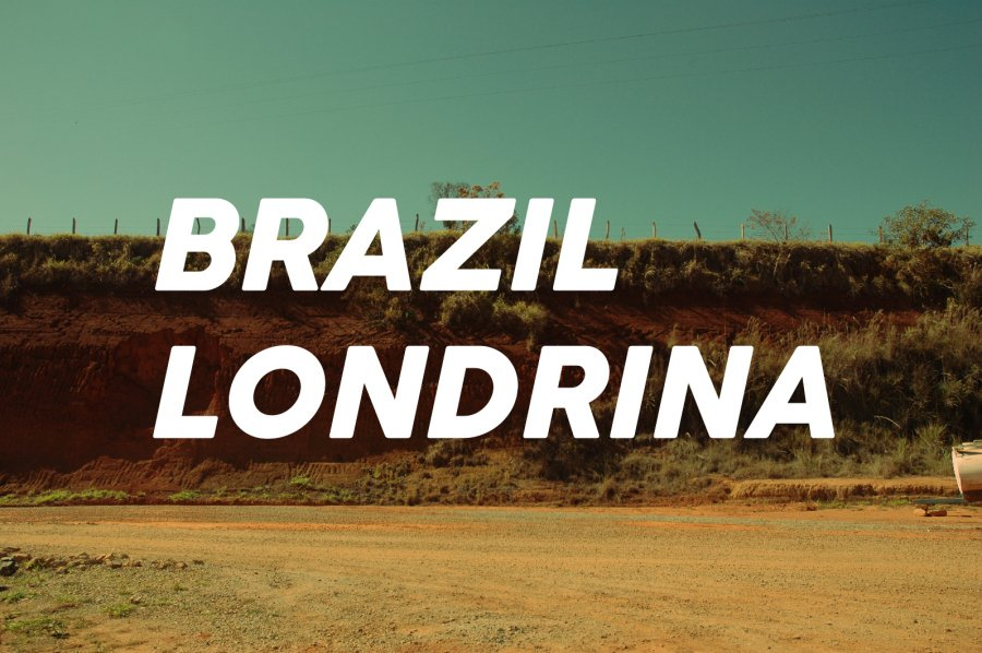 100g Brazil Londrina(中煎り)<img class='new_mark_img2' src='https://img.shop-pro.jp/img/new/icons8.gif' style='border:none;display:inline;margin:0px;padding:0px;width:auto;' />