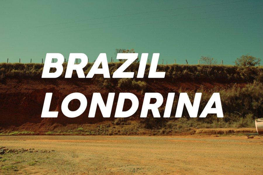 200g Brazil Londrina(中煎り)<img class='new_mark_img2' src='https://img.shop-pro.jp/img/new/icons8.gif' style='border:none;display:inline;margin:0px;padding:0px;width:auto;' />
