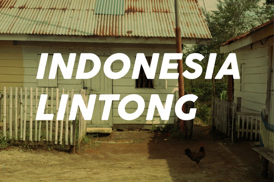 200g Indonesia Lintong<br>(中煎り)<img class='new_mark_img2' src='https://img.shop-pro.jp/img/new/icons47.gif' style='border:none;display:inline;margin:0px;padding:0px;width:auto;' />