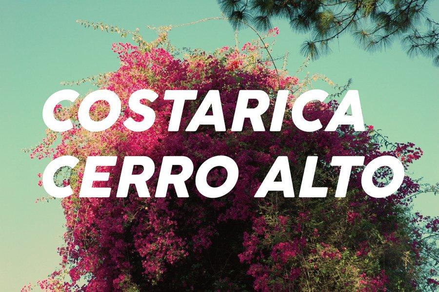 100g Guatemala La-Tacita(中煎り)<img class='new_mark_img2' src='https://img.shop-pro.jp/img/new/icons47.gif' style='border:none;display:inline;margin:0px;padding:0px;width:auto;' />