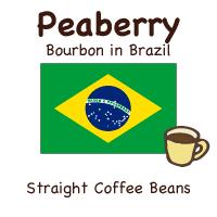 [ピーベリークラシコ]丸い形の希少なコーヒー豆