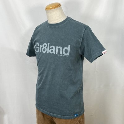 <img class='new_mark_img1' src='https://img.shop-pro.jp/img/new/icons15.gif' style='border:none;display:inline;margin:0px;padding:0px;width:auto;' />21Gr8land LOGO  TEE カラー:BODY: P.SLATE PRINT: WHT