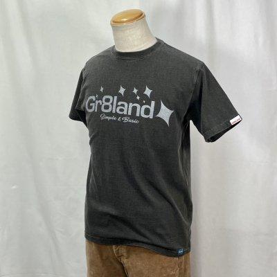 ISLAND LOGO TEE カラー:P.BLACK