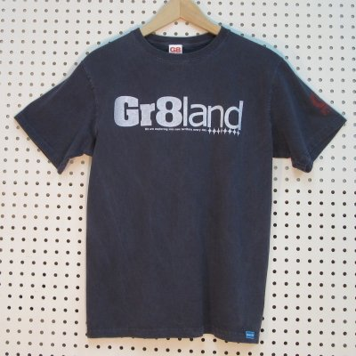 CLASSIC GR8LAND LOG TEE カラー:P.NAVY/WHT