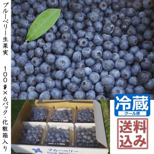 【予約商品】◇ブルーベリー生果実 化学肥料不使用:農薬不使用《100g×6パック・化粧箱入り》 [送料・クール便代込み価格]