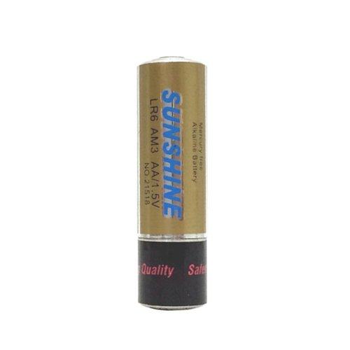 【メール便対応】 隠し金庫 単三電池型ピルケース