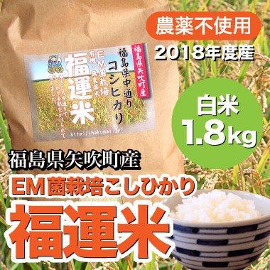 新米無農薬米EMこしひかり福運米約1.8kg(白米)福島矢吹町産