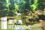 屋久島REALWAVE